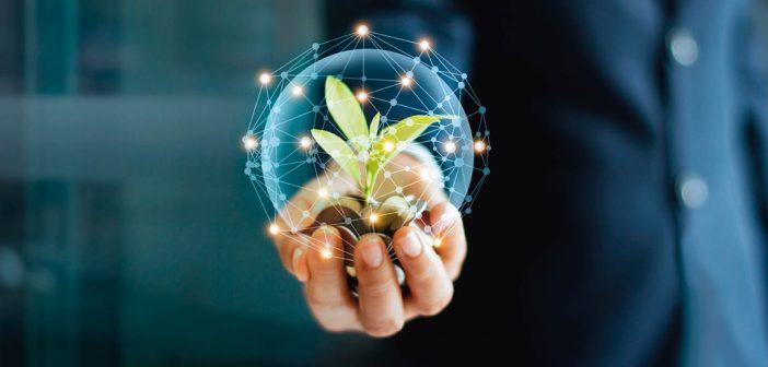 Tech Sector Growth
