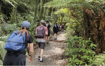 Cambridge firm Rocketspark take a guided mindful walk on Maungatautari.